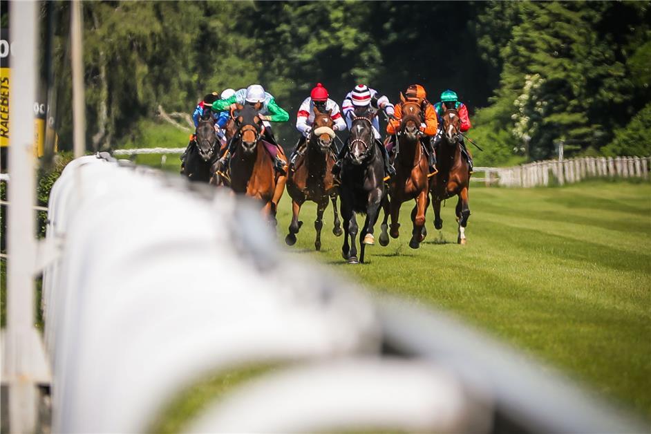 Pferderennen Dortmund