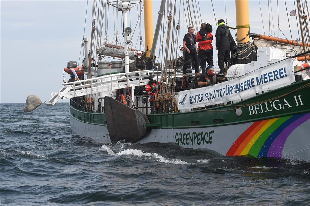 Greenpeace Beluga