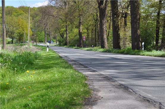 Klettergerüst Schlosspark Herten : Halterner zeitung