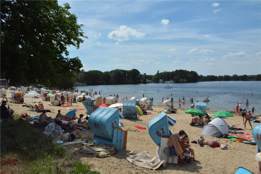 Single haltern am see