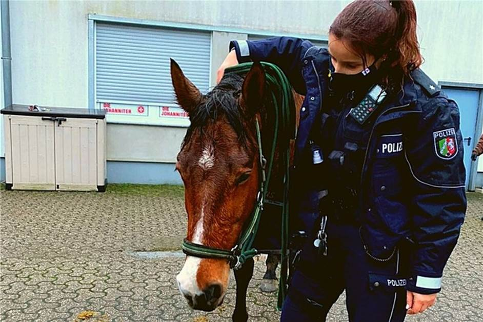 Polizei Verfolgungsjagd Spiele